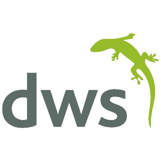 DWS Corp Logo
